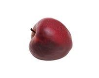 το μήλο απομόνωσε το κόκκινο ώριμο Στοκ εικόνες με δικαίωμα ελεύθερης χρήσης