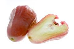 το μήλο αυξήθηκε Στοκ Εικόνες