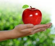 το μήλο δίνει το σας Στοκ φωτογραφία με δικαίωμα ελεύθερης χρήσης