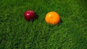 το μήλο και το μανταρίνι βρίσκονται στην πράσινη χλόη Στοκ εικόνες με δικαίωμα ελεύθερης χρήσης