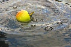 το μήλο στενό έπεσε απομονωμένο επάνω λευκό ύδατος στοκ εικόνες