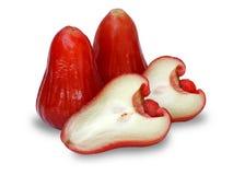 το μήλο 2 αυξήθηκε Στοκ εικόνες με δικαίωμα ελεύθερης χρήσης