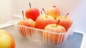 το μήλο είναι ένα από μισό δωδεκάδ πακέτο Στοκ εικόνα με δικαίωμα ελεύθερης χρήσης