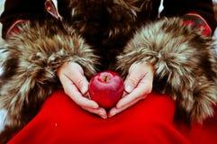 Το μήλο Χριστουγέννων στη γυναίκα δίνει το χειμερινό παραμύθι Στοκ εικόνες με δικαίωμα ελεύθερης χρήσης