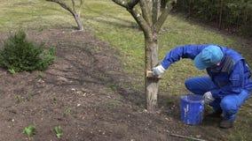 Το μίγμα ατόμων κηπουρών ασπρίζει το υγρό στον μπλε κάδο κοντά στο οπωρωφόρο δέντρο μήλων απόθεμα βίντεο