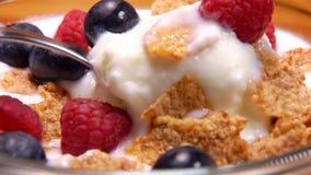 Το μίγμα των νιφάδων δημητριακών με τα μούρα και το γιαούρτι λαμβάνεται από το κουτάλι απόθεμα βίντεο