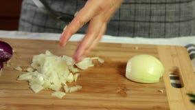 Το μαγείρεμα γυναικών δίνει στο σπίτι τα τέμνοντα κρεμμύδια απόθεμα βίντεο