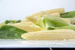 το μαγειρεύοντας καλαμπόκι μωρών έκοψε πρόσφατα έτοιμα τα συστατικά λαχανικά wok Στοκ φωτογραφία με δικαίωμα ελεύθερης χρήσης