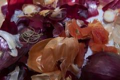 Το μαγειρεύοντας υπόβαθρο, φυτικά απόβλητα όπως το κόκκινο και καφετί κρεμμύδι κατουρεί Στοκ εικόνες με δικαίωμα ελεύθερης χρήσης