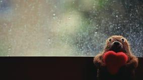 Το μαλλί αντέχει τις πτώσεις βροχής καρδιών απόθεμα βίντεο