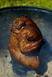 Το μαριναρισμένο και ψημένο στη σχάρα κοτόπουλο που γεμίζεται με μια μπύρα μπορεί Στοκ εικόνες με δικαίωμα ελεύθερης χρήσης