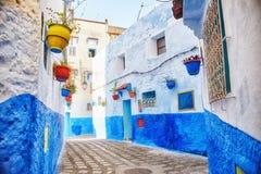 Το Μαρόκο είναι η μπλε πόλη Chefchaouen, ατελείωτες οδοί που χρωματίζονται στο μπλε χρώμα Μέρη των λουλουδιών και των αναμνηστικώ Στοκ εικόνα με δικαίωμα ελεύθερης χρήσης