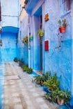 Το Μαρόκο είναι η μπλε πόλη Chefchaouen, ατελείωτες οδοί που χρωματίζονται στο μπλε χρώμα Μέρη των λουλουδιών και των αναμνηστικώ Στοκ Εικόνες