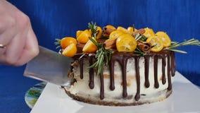 Το μαχαίρι κόβει το κέικ με στενό επάνω φραουλών και βακκινίων Κοπή ενός κέικ φραουλών με ένα μαχαίρι Φράουλα φρούτων φιλμ μικρού μήκους