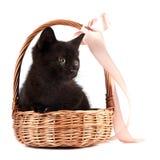 Το μαύρο γατάκι στο α το καλάθι με μια κορδέλλα Στοκ Εικόνες