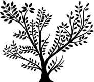 Το μαύρο δέντρο με βγάζει φύλλα Στοκ εικόνα με δικαίωμα ελεύθερης χρήσης