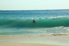 Το μεγάλο κύμα στην καραϊβική θάλασσα σπάζει την ακτή και καταπίνει ένα θηλυκό Στοκ Εικόνα