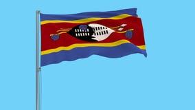 Το μεγάλο ύφασμα απομονώνει τη σημαία του βασίλειου του eSwatini - Σουαζιλάνδη, μήκος σε πόδηα 4k prores, άλφα διαφάνεια απεικόνιση αποθεμάτων