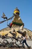 Το μεγάλο Bodhnath Στοκ Φωτογραφία