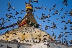 Το μεγάλο stupa Στοκ εικόνα με δικαίωμα ελεύθερης χρήσης