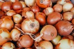Το μεγάλο κρεμμύδι πωλεί στην αγορά Στοκ Εικόνα