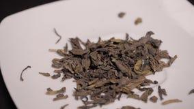 Το μεγάλο τσάι φύλλων χύνεται σε ένα άσπρο πιατάκι, μαύρο τσάι απόθεμα βίντεο