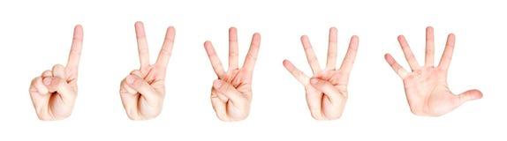 το μετρώντας χέρι πέντε ένα υ&p Στοκ Φωτογραφία