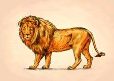 Το μελάνι ζωγραφικής βουρτσών σύρει την απεικόνιση λιονταριών Στοκ φωτογραφία με δικαίωμα ελεύθερης χρήσης