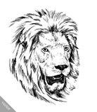 Το μελάνι ζωγραφικής βουρτσών σύρει την απομονωμένη απεικόνιση λιονταριών Στοκ φωτογραφίες με δικαίωμα ελεύθερης χρήσης
