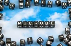 Το μικρόβιο λέξης Στοκ Φωτογραφία