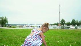 Το μικρό καλό κορίτσι συλλέγει τα λουλούδια σε ένα πράσινο λιβάδι στον ποταμό φιλμ μικρού μήκους