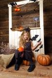 Το μικρό κορίτσι έντυσε όπως μια μάγισσα κάθεται σε μια κολοκύθα Η έννοια αποκριών Στοκ Φωτογραφίες