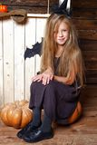 Το μικρό κορίτσι έντυσε όπως μια μάγισσα κάθεται σε μια κολοκύθα Η έννοια αποκριών Στοκ Φωτογραφία