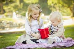 Το μικρό κορίτσι δίνει στον αδελφό μωρών της ένα δώρο στο πάρκο Στοκ Εικόνες
