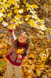 Το μικρό κορίτσι μαδά τα φύλλα στο πάρκο φθινοπώρου στοκ φωτογραφία με δικαίωμα ελεύθερης χρήσης