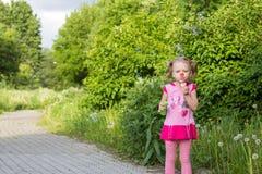 Το μικρό κορίτσι με τις πλεξίδες φυσά τις φυσαλίδες σαπουνιών Στοκ εικόνες με δικαίωμα ελεύθερης χρήσης