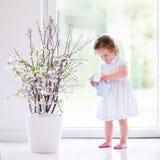 Το μικρό κορίτσι με το πρώτο ελατήριο ανθίζει στο σπίτι Στοκ Εικόνες
