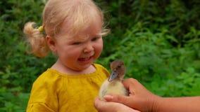 Το μικρό κορίτσι παίρνει φοβησμένο όταν γυρίζει ο νεοσσός φιλμ μικρού μήκους