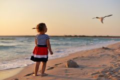 Το μικρό κορίτσι στέκεται χωρίς παπούτσια στην υγρή άμμο στην παραλία και εξετάζει πετώντας Seagull στοκ εικόνες με δικαίωμα ελεύθερης χρήσης
