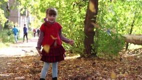 Το μικρό κορίτσι στην κόκκινη φανέλλα ρίχνει επάνω στα φύλλα απόθεμα βίντεο