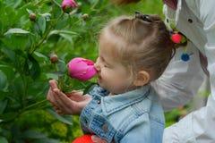 Το μικρό κορίτσι στον κήπο με τα peonies ανθίζει Στοκ Εικόνες