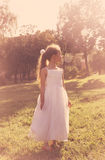 Το μικρό κορίτσι Cutel που φορά το κοστούμι νεράιδων απολαμβάνει το καλοκαίρι στο ηλιοβασίλεμα Στοκ εικόνες με δικαίωμα ελεύθερης χρήσης