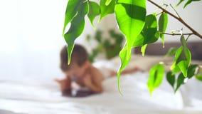 Το μικρό παιδί εξετάζει την ταμπλέτα στο κρεβάτι απόθεμα βίντεο