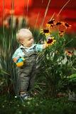 Το μικρό παιδί με ένα πότισμα μπορεί να ελέγξει την ποιότητα των λουλουδιών Στοκ Φωτογραφίες
