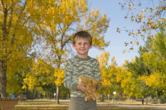 Το μικρό παιδί παίζει με τα ζωηρόχρωμα φύλλα στον αέρα Στοκ Φωτογραφίες