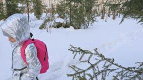 Το μικρό παιδί περπατά στα ξύλα Το παιδί είναι περίπατος στο δασικό πάρκο πόλεων σημύδων Περίπατοι κοριτσιών στο χρόνο βραδιού με φιλμ μικρού μήκους
