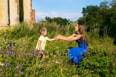 Το μικρό παιδί δίνει τα λουλούδια λιβαδιών στη μητέρα στοκ φωτογραφία με δικαίωμα ελεύθερης χρήσης