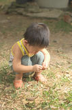 Το μικρό παιδί εξερευνά τον κόσμο Στοκ εικόνες με δικαίωμα ελεύθερης χρήσης