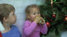 Το μικρό παιδί και το κορίτσι κάθονται στο πάτωμα και κατανάλωση των μήλων δίπλα σε ένα χριστουγεννιάτικο δέντρο φιλμ μικρού μήκους