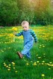 Το μικρό παιδί με μια ανθοδέσμη των κίτρινων λουλουδιών περπατά την άνοιξη το λιβάδι Στοκ Εικόνα